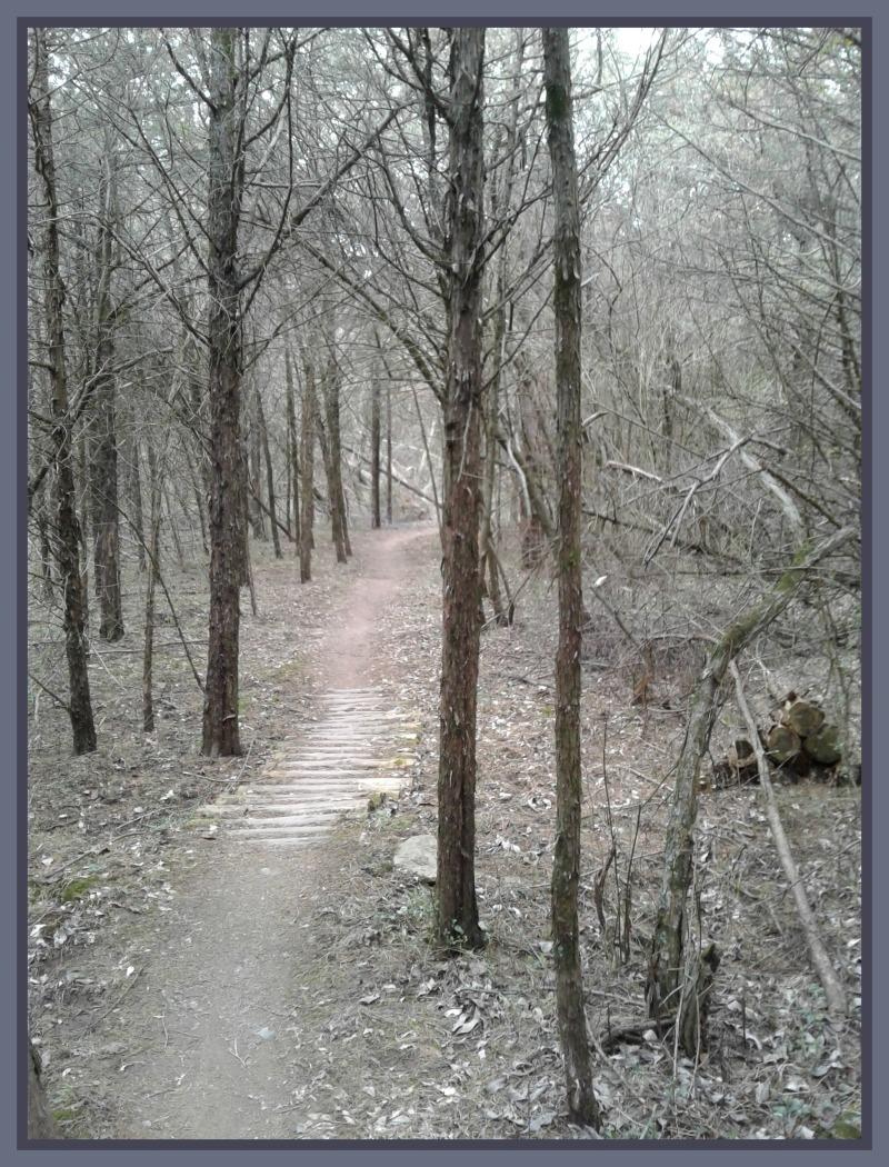 nock ghost pines